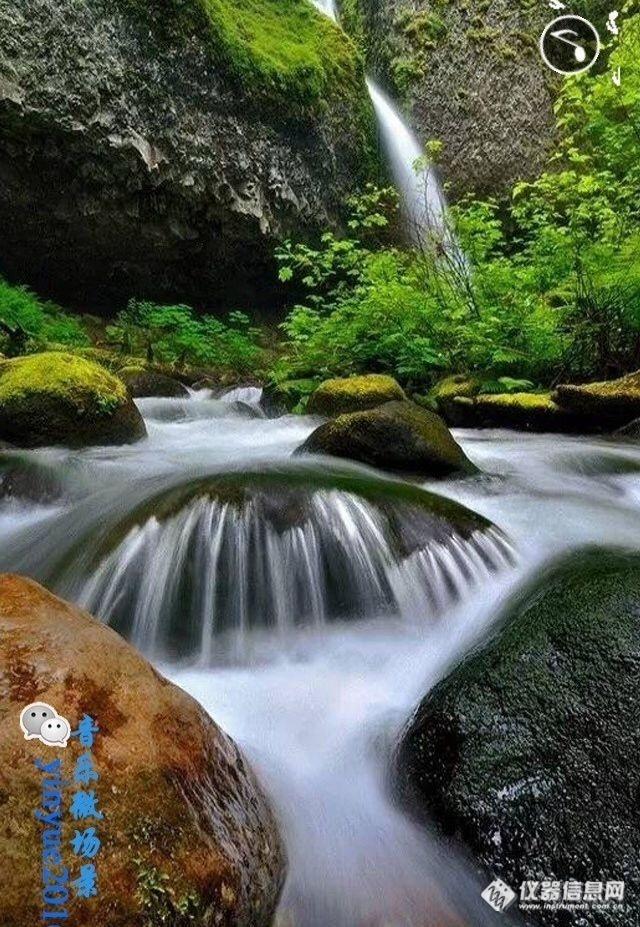 壁纸 风景 山水 桌面 640_927 竖版 竖屏 手机