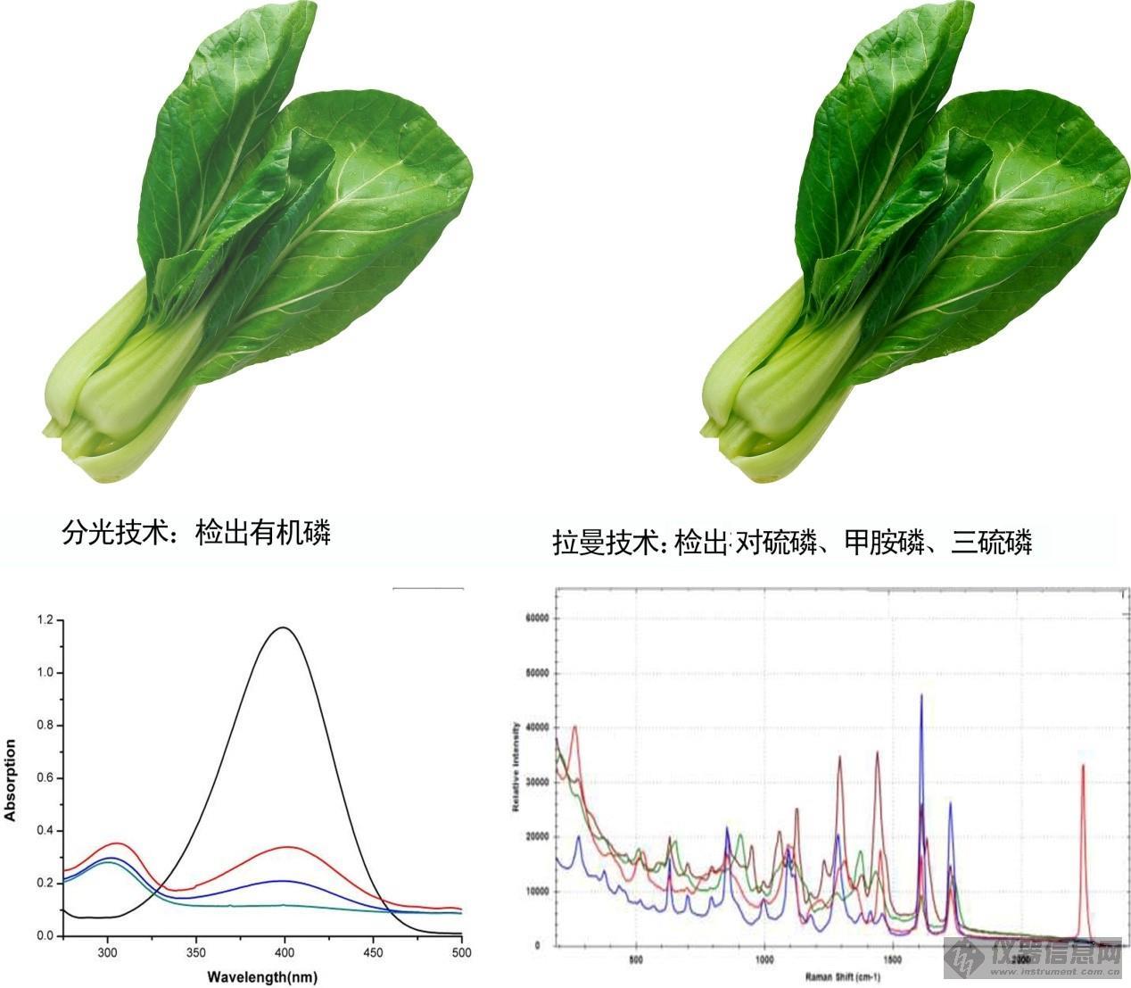 果蔬有机磷拉曼光谱图